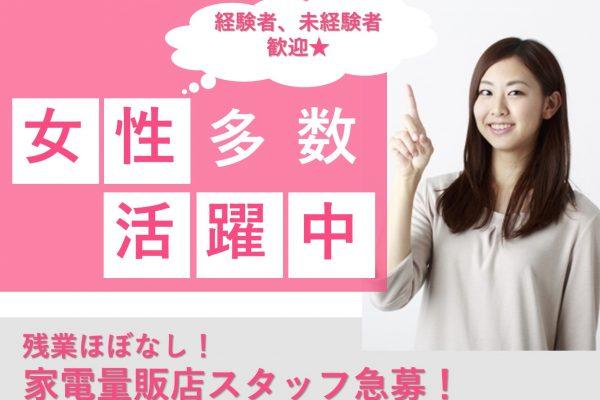 【岡崎市で働こう♪】接客のスキルを高める◎経験者も必見◎家電量販店スタッフ急募 イメージ