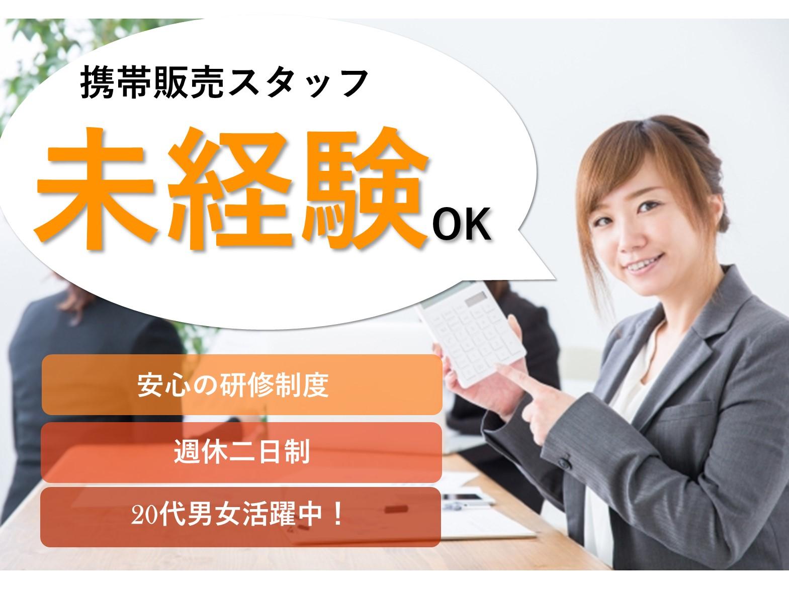 家電量販店の携帯販売スタッフ【即面談可能】未経験OK!キャリアUPも◎ イメージ